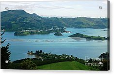 Otago Harbour Acrylic Print by Therese Alcorn