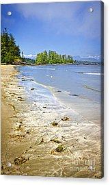 Pacific Ocean Coast On Vancouver Island Acrylic Print by Elena Elisseeva