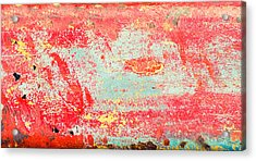 Painted Metal Acrylic Print by Tom Gowanlock