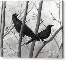 Pair Of Crows Acrylic Print by Christian Conner