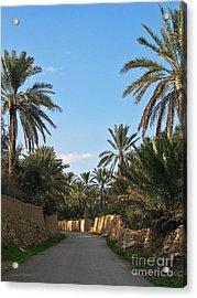 Palm Gardens In Palmyra Oasis Acrylic Print by Issam Hajjar