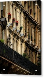 Paris Windows Acrylic Print by Andrew Fare