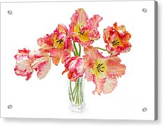 Parrot Tulips In A Glass Vase Acrylic Print by Ann Garrett
