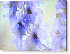 Passion For Flowers. Blue Dreams Acrylic Print by Jenny Rainbow