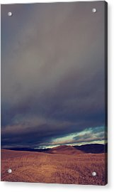Passionate Souls Acrylic Print by Laurie Search
