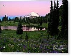 Pastel Skies Over Rainier Acrylic Print by Marcus Angeline