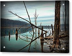 Path To Enlightment Acrylic Print by Paul Ward