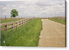 Pathway Surrounded By Wooden Fence Acrylic Print by Kathryn Froilan