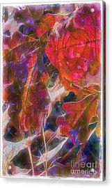 Patterns In Scarlet Acrylic Print by Judi Bagwell