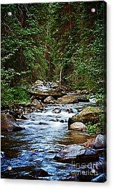 Peaceful Mountain River Acrylic Print by Lisa Holmgreen