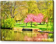 Peaceful Spring II Acrylic Print by Darren Fisher