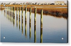 Pelican On Posts Acrylic Print by Paulette Thomas