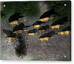 Phoberomys Pattersoni, Prehistoric Rodent Acrylic Print by Christian Darkin