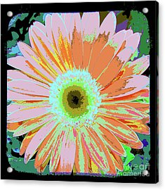 Photography Art Floral Acrylic Print by Ricki Mountain