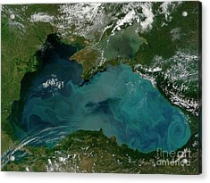 Phytoplankton Bloom In The Black Sea Acrylic Print by Stocktrek Images