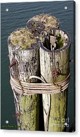 Pier Top World Acrylic Print by Larry Keahey