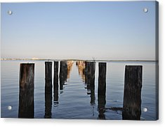 Pilings From An Old Pier Acrylic Print by Bill Cannon