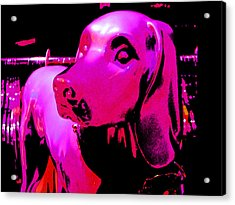 Pink And Purple Pooch Acrylic Print by Kym Backland
