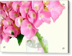 Pink Hydrangea In A Glass Vase Acrylic Print by Anne Kitzman