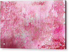 Pink Lady Acrylic Print by Christopher Gaston