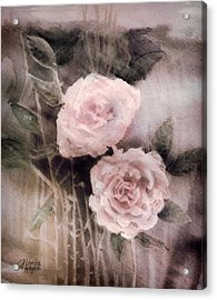 Pink Roses Acrylic Print by Arline Wagner