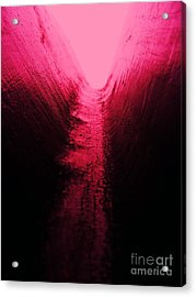 pink Valley Acrylic Print by Trevor Fellows