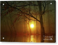 Place To Dream Acrylic Print by Bruno Santoro