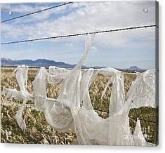 Plastic Garbage Bag On A Wire Fence Acrylic Print by Paul Edmondson