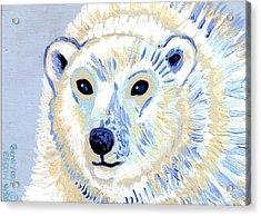 Polar Bear Acrylic Print by Genevieve Esson