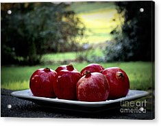 Pomegranates On White Platter 3 Acrylic Print by Tanya  Searcy