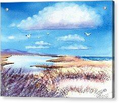 Pond At South Cape Beach Acrylic Print by Joseph Gallant