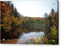 Pond On Limekiln Road In Inlet New York Acrylic Print by David Patterson