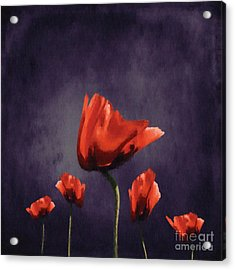Poppies Fun 02b Acrylic Print by Variance Collections