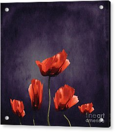Poppies Fun 03b Acrylic Print by Variance Collections