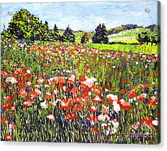 Poppy Fields In France Acrylic Print by David Lloyd Glover