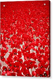 Poppy Meadow ... Acrylic Print by Juergen Weiss