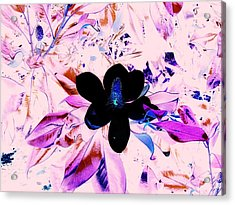 Positive Space Acrylic Print by Aimee Bruno