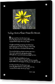 Poster Poem - I Sent A Flower Down The Stream Acrylic Print by Poetic Expressions