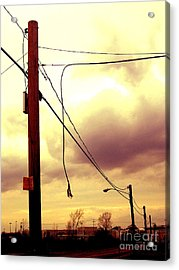 Powerline Acrylic Print by Silvie Kendall
