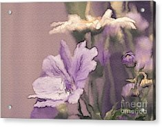 Pretty Bouquet - A05t01 Acrylic Print by Variance Collections