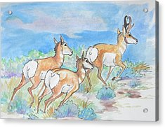 Prongs Acrylic Print by Jenn Cunningham