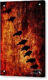 Prophets Acrylic Print by Andrew Paranavitana