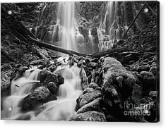 Proxy Falls Acrylic Print by Keith Kapple