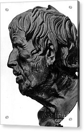 Pseudo-seneca Acrylic Print by Granger