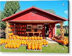 Pumpkin Barn Acrylic Print by Rachel Cohen