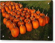 Pumpkin Piles Acrylic Print by LeeAnn McLaneGoetz McLaneGoetzStudioLLCcom