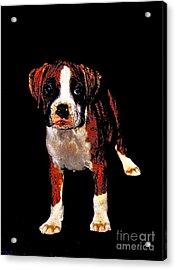 Pup 2 Acrylic Print by Xn Tyler