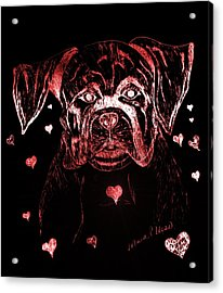 Puppy Love Acrylic Print by Maria Urso