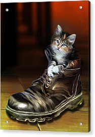 Puss In Boot Acrylic Print by Julie L Hoddinott