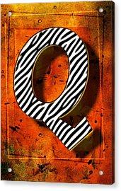 Q Acrylic Print by Mauro Celotti
